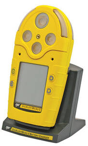 BW Technologies Cradle Charger and Rechargeable Battery Pack, Yellow